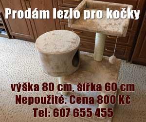 lezlo_pro_kocky